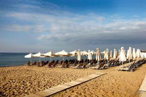 beach-bar-3